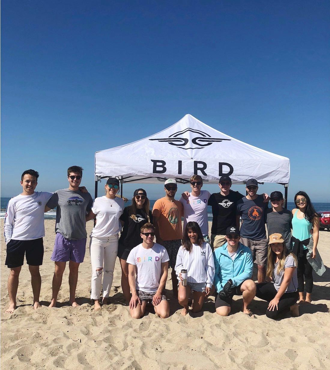 Bird.co photo 2